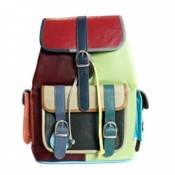 Blue Jay Backpack(2)